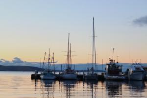 Dock in Tasmania